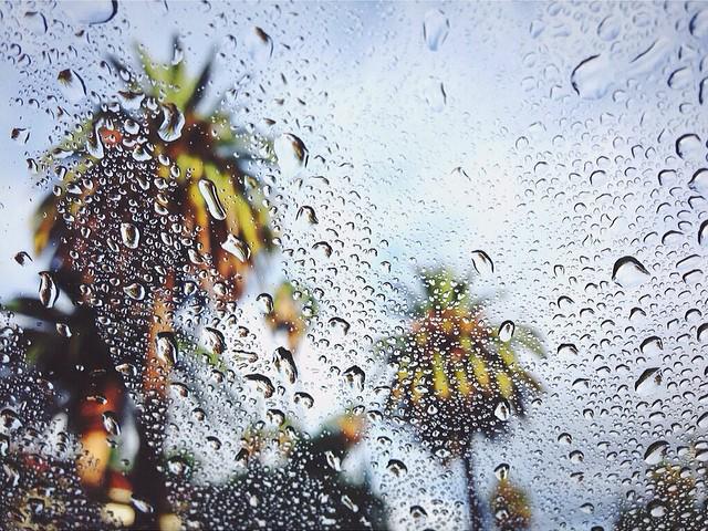 Walzer_best_rain