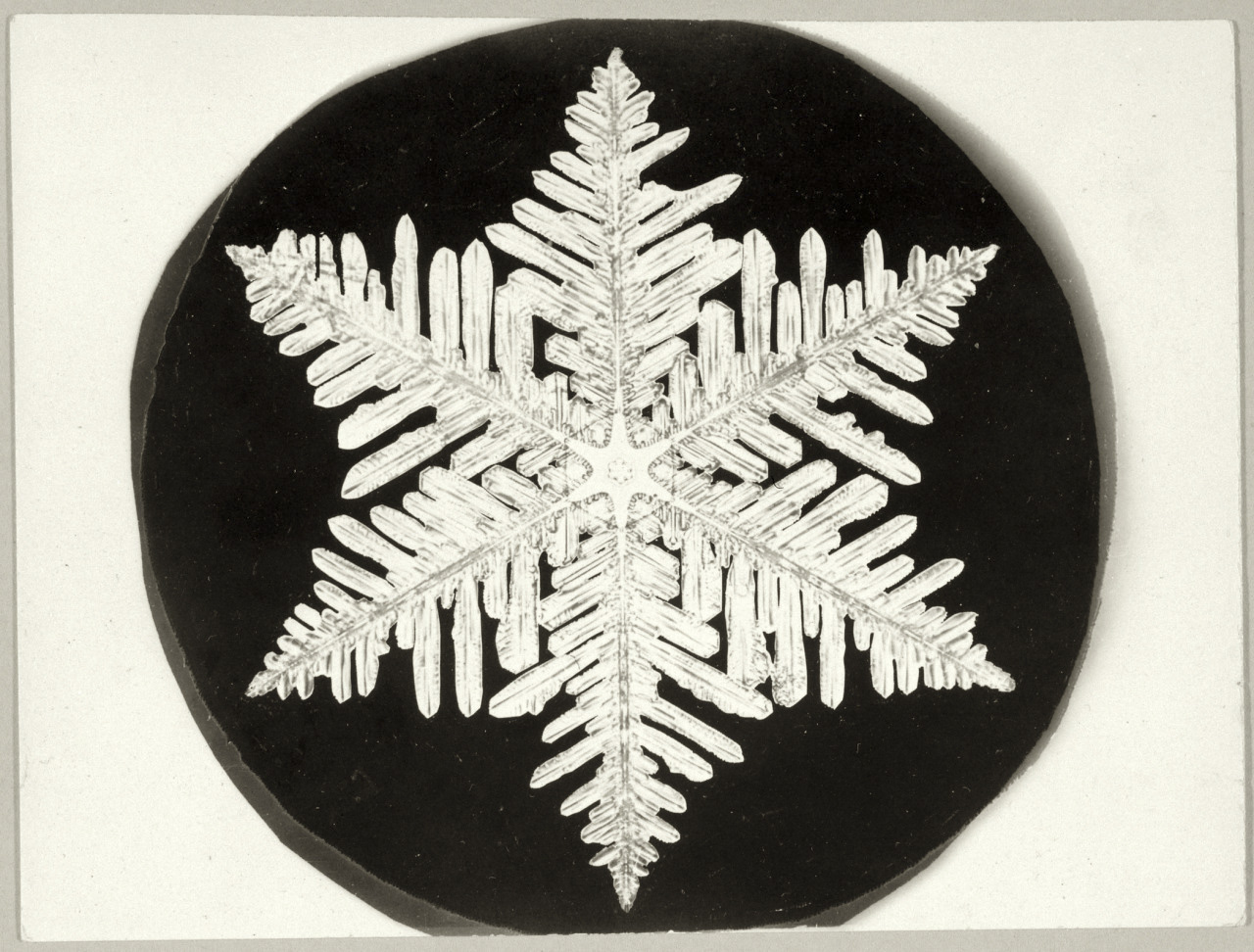 Only At Rit Professors Photograph A Snowflake Using A Wet